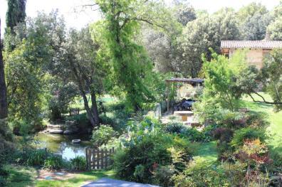 Basa i jardí